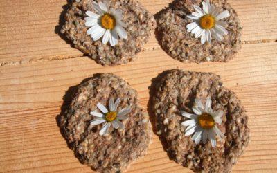 Sonnige-Hanf-Brote